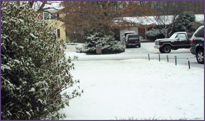 light snow on the lawn