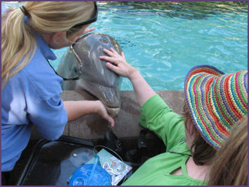 Trish petting female dolphin at Sea World