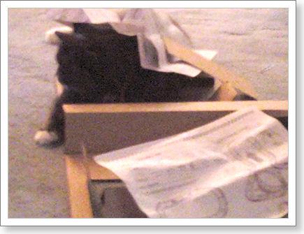 ,,,and Zoe thinks she's hiding