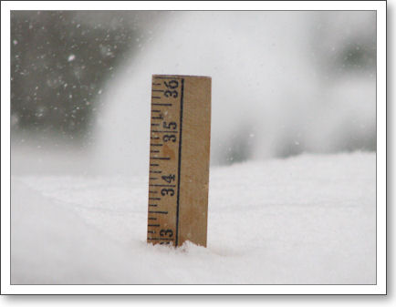 Top of yardstick sticking up out of deep snow